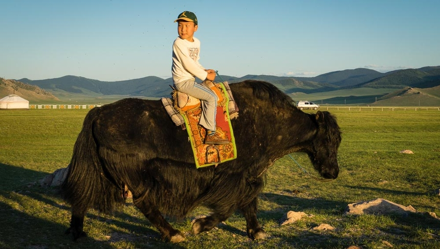Stay with nomad family and Mongolian horse ride