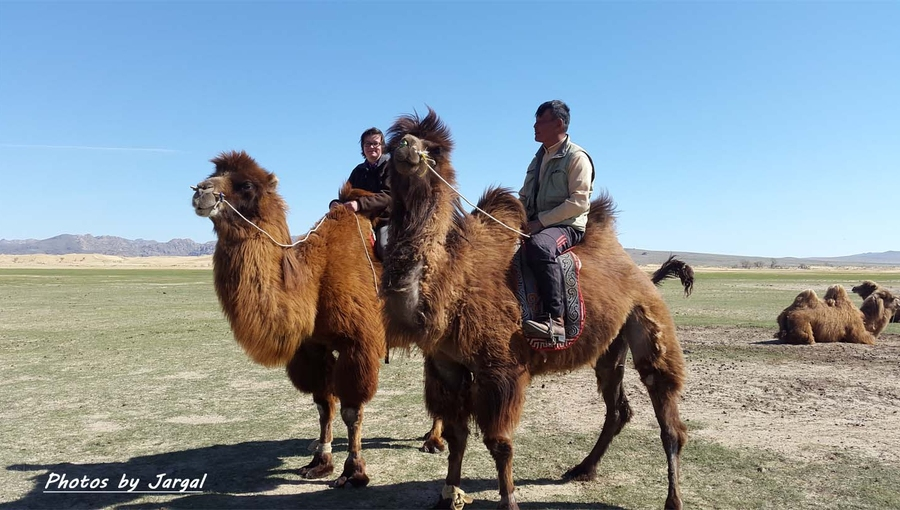 Camel trekking tour through Mongolian Largest sand dunes